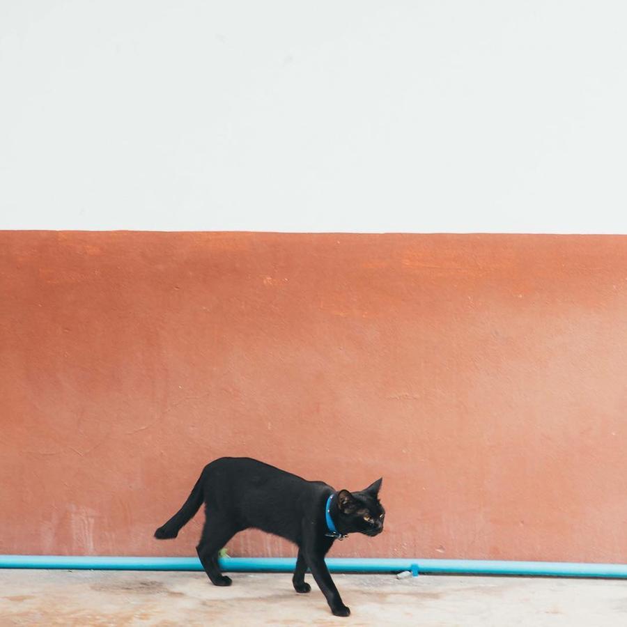 minimalismo tailândia 5